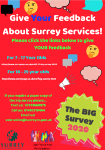 Flyer for survey